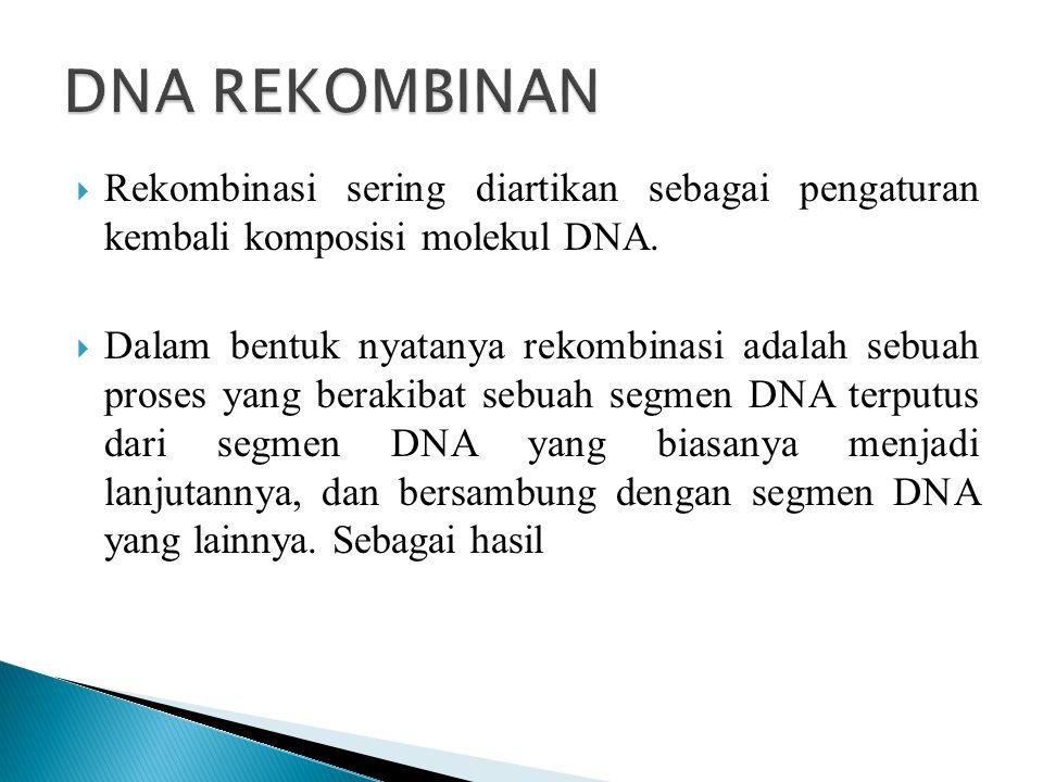  Rekombinasi sering diartikan sebagai pengaturan kembali komposisi molekul DNA.  Dalam bentuk nyatanya rekombinasi adalah sebuah proses yang berakib