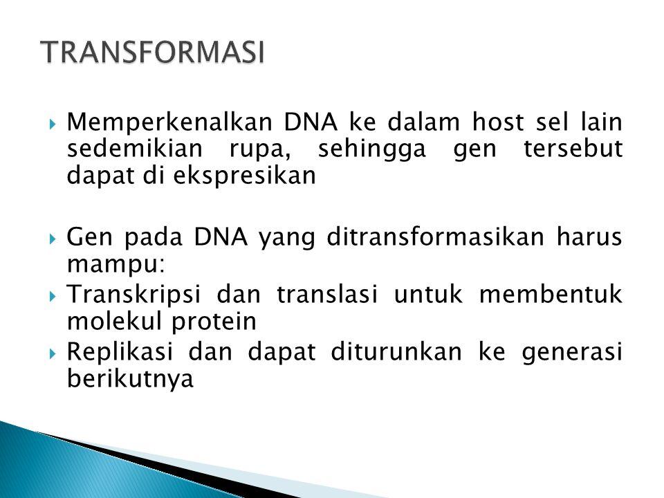  Memperkenalkan DNA ke dalam host sel lain sedemikian rupa, sehingga gen tersebut dapat di ekspresikan  Gen pada DNA yang ditransformasikan harus ma