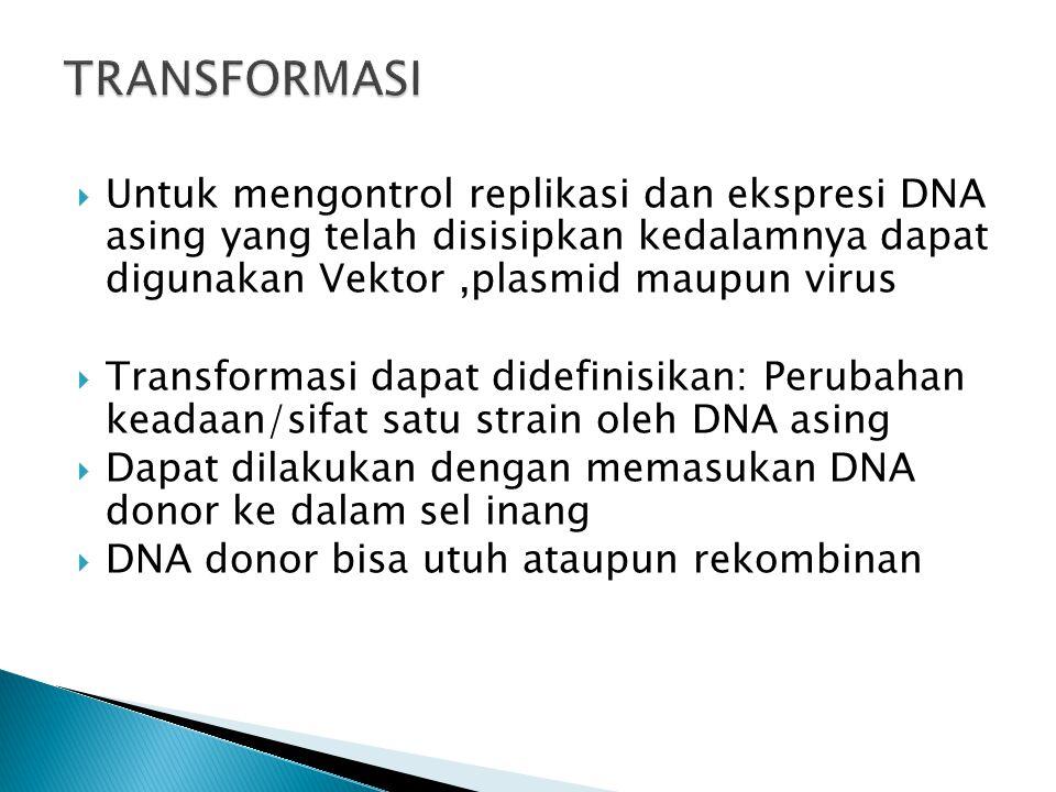  Untuk mengontrol replikasi dan ekspresi DNA asing yang telah disisipkan kedalamnya dapat digunakan Vektor,plasmid maupun virus  Transformasi dapat