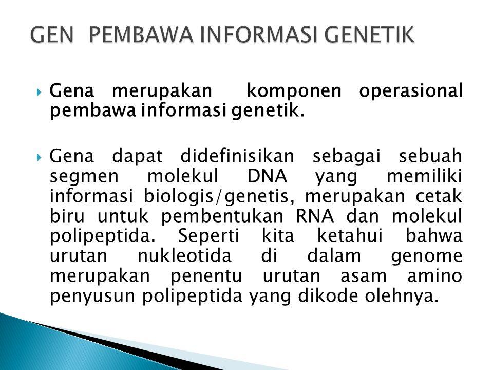  Gena merupakan komponen operasional pembawa informasi genetik.  Gena dapat didefinisikan sebagai sebuah segmen molekul DNA yang memiliki informasi