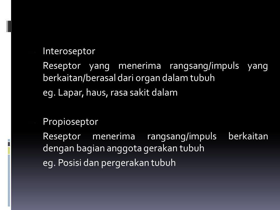 BUTA WARNA AKROMATISME/AKROMATOPSIA/Total → tidak dapat membedakan warna dasar, terlihat hitam dan abu-abu DIAKROMATISME/Partial → bisa mbedakan warna tertentu  Deutrinophia : sel kerucut hijau (-)  Protanophia : sel kerucut merah (-)  Tritanophia : sel kerucut biru/kuning (-) Menurut Hering ada 3 macam fotokhemis yang mempunyai 6 macam kualitas yang memberikan 6 macam sensasi → substansi putih-hitam, merah-hijau, biru-kuning.
