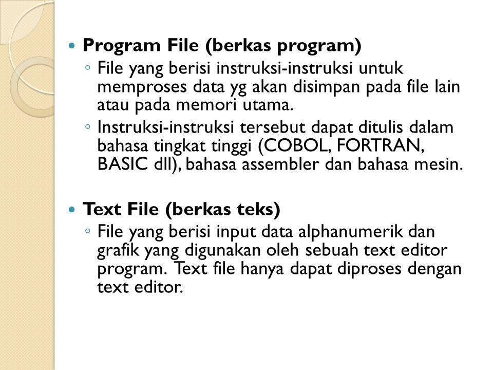 Program File (berkas program) ◦ File yang berisi instruksi-instruksi untuk memproses data yg akan disimpan pada file lain atau pada memori utama.