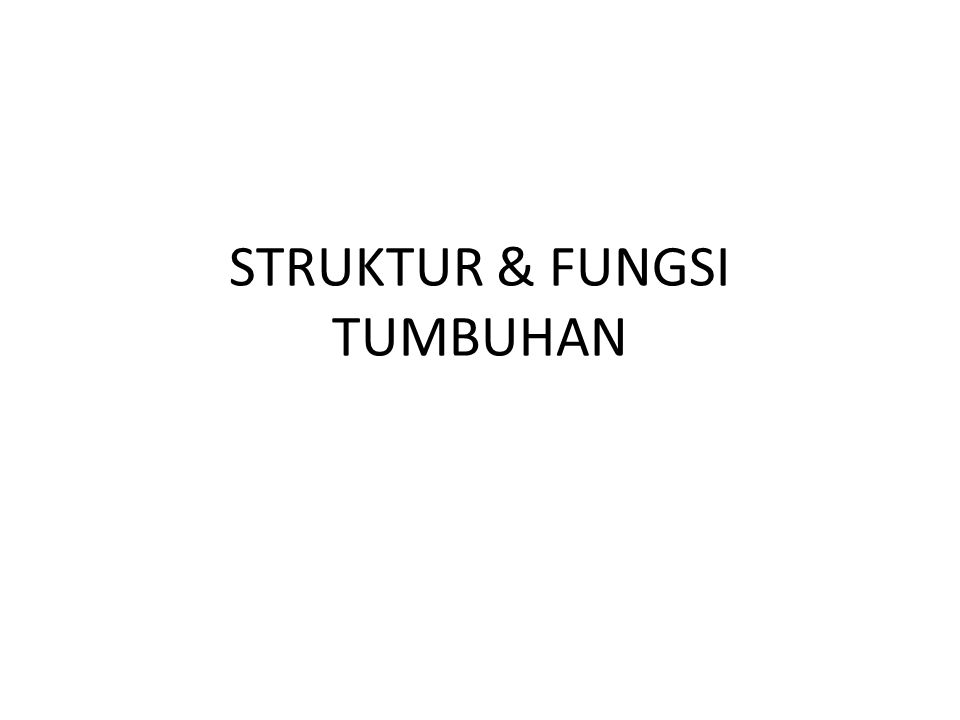 STRUKTUR & FUNGSI TUMBUHAN