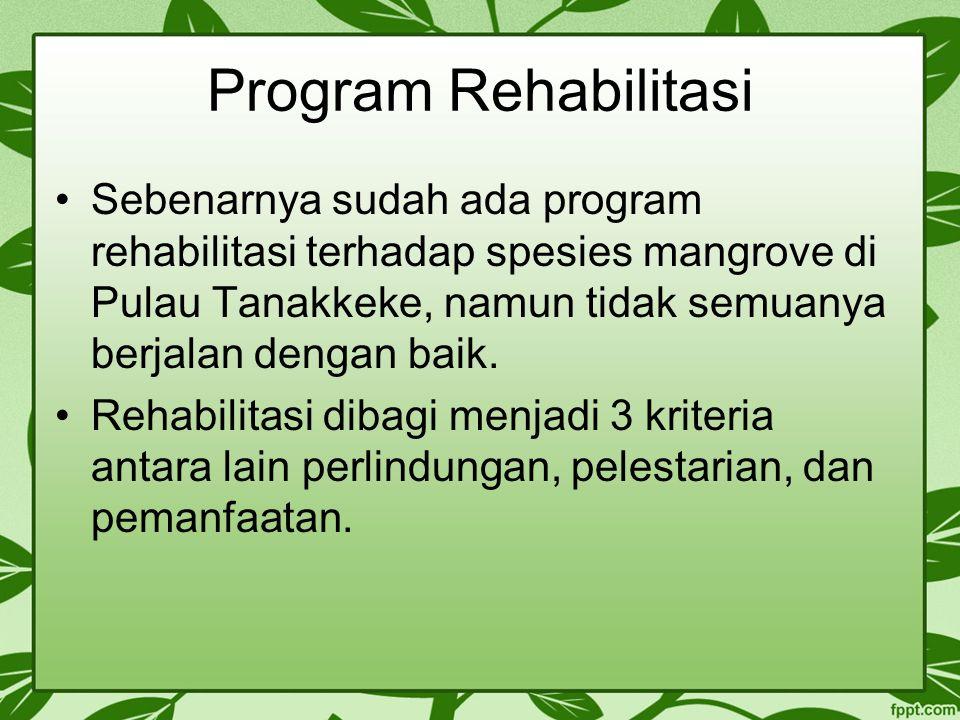 Program Rehabilitasi Sebenarnya sudah ada program rehabilitasi terhadap spesies mangrove di Pulau Tanakkeke, namun tidak semuanya berjalan dengan baik
