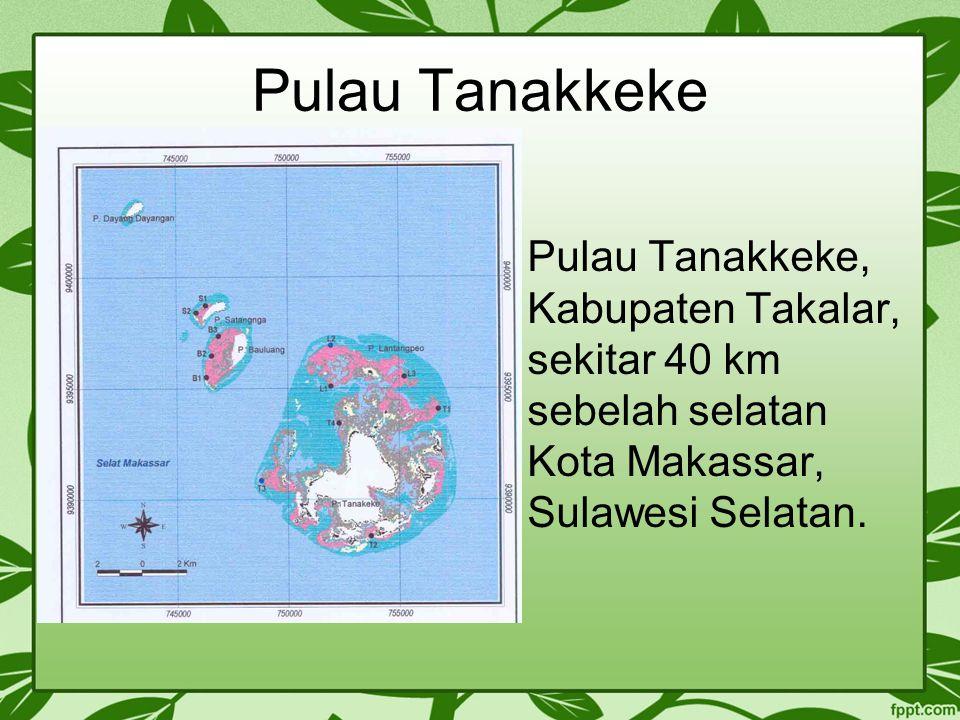 Pulau Tanakkeke Pulau Tanakkeke, Kabupaten Takalar, sekitar 40 km sebelah selatan Kota Makassar, Sulawesi Selatan.