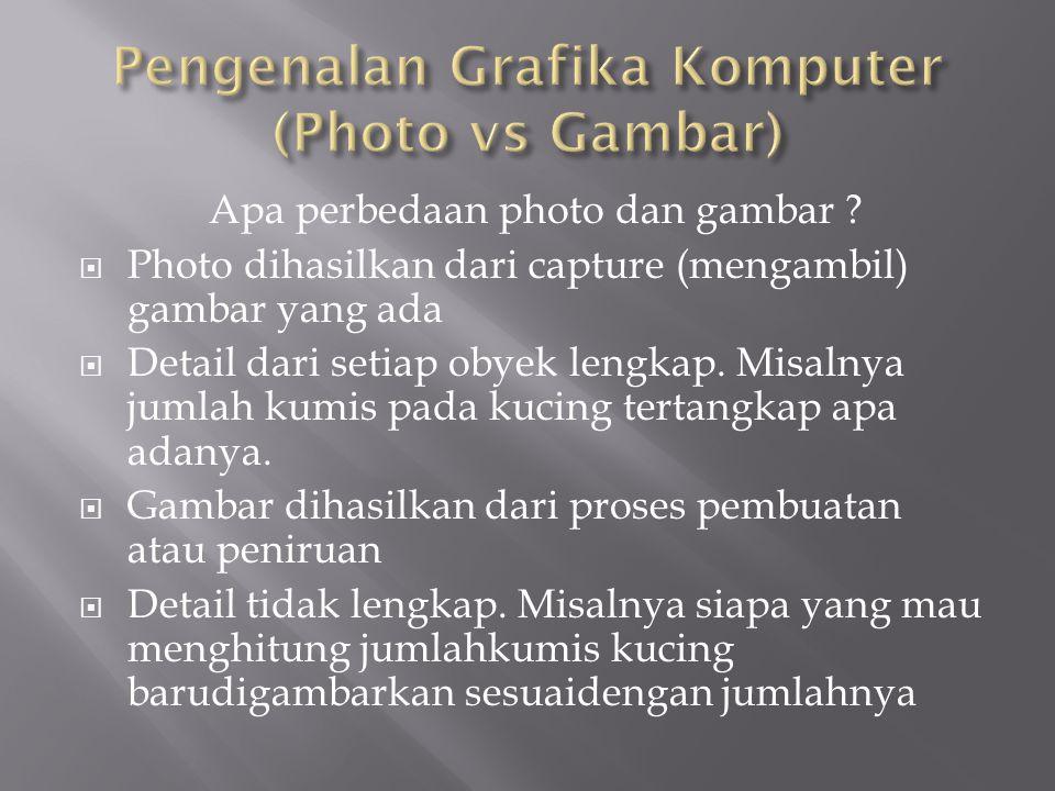 Apa perbedaan photo dan gambar ?  Photo dihasilkan dari capture (mengambil) gambar yang ada  Detail dari setiap obyek lengkap. Misalnya jumlah kumis