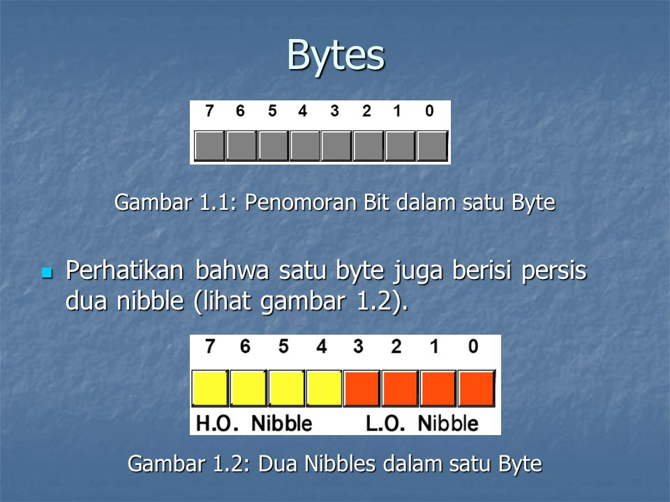 Bytes Gambar 1.1: Penomoran Bit dalam satu Byte Perhatikan bahwa satu byte juga berisi persis dua nibble (lihat gambar 1.2). Perhatikan bahwa satu byt