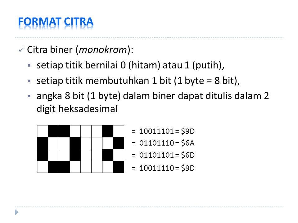 Citra biner (monokrom):  setiap titik bernilai 0 (hitam) atau 1 (putih),  setiap titik membutuhkan 1 bit (1 byte = 8 bit),  angka 8 bit (1 byte) da