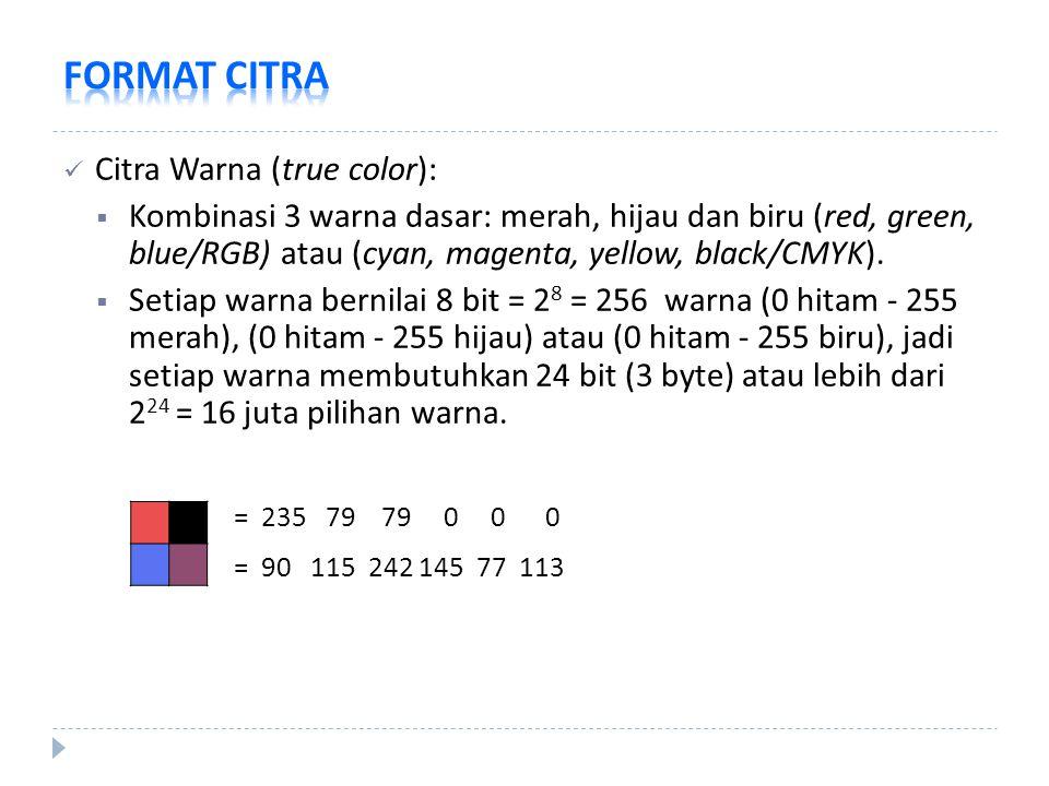 Citra Warna (true color):  Kombinasi 3 warna dasar: merah, hijau dan biru (red, green, blue/RGB) atau (cyan, magenta, yellow, black/CMYK).  Setiap w