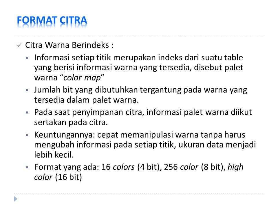 """Citra Warna Berindeks :  Informasi setiap titik merupakan indeks dari suatu table yang berisi informasi warna yang tersedia, disebut palet warna """"col"""