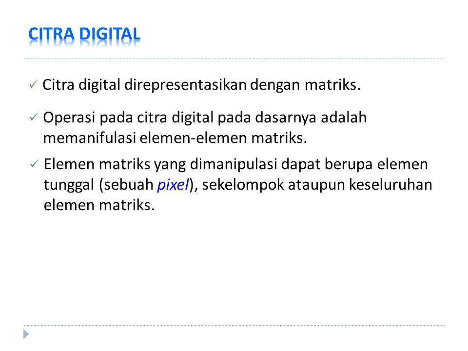 Citra digital direpresentasikan dengan matriks. Operasi pada citra digital pada dasarnya adalah memanifulasi elemen-elemen matriks. Elemen matriks yan