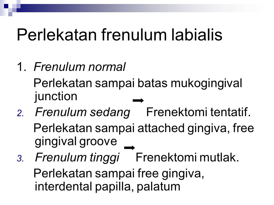 Perlekatan frenulum labialis 1.Frenulum normal Perlekatan sampai batas mukogingival junction 2.