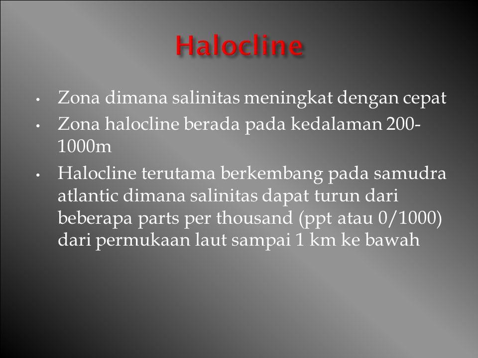 Zona dimana salinitas meningkat dengan cepat Zona halocline berada pada kedalaman 200- 1000m Halocline terutama berkembang pada samudra atlantic diman