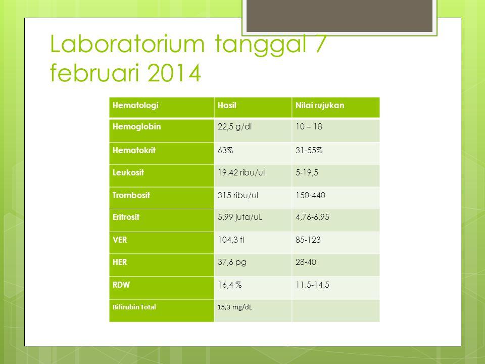 Laboratorium tanggal 7 februari 2014 HematologiHasilNilai rujukan Hemoglobin 22,5 g/dl10 – 18 Hematokrit 63%31-55% Leukosit 19.42 ribu/ul5-19,5 Trombosit 315 ribu/ul150-440 Eritrosit 5,99 juta/uL4,76-6,95 VER 104,3 fl85-123 HER 37,6 pg28-40 RDW 16,4 %11.5-14.5 Bilirubin Total15,3 mg/dL