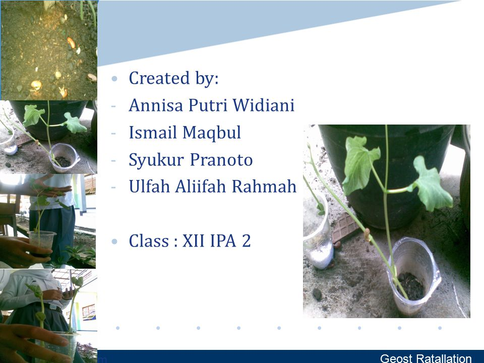 www.company.com Created by: -Annisa Putri Widiani -Ismail Maqbul -Syukur Pranoto -Ulfah Aliifah Rahmah Class : XII IPA 2 Geost Ratallation