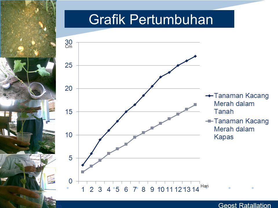 www.company.com Grafik Pertumbuhan Geost Ratallation