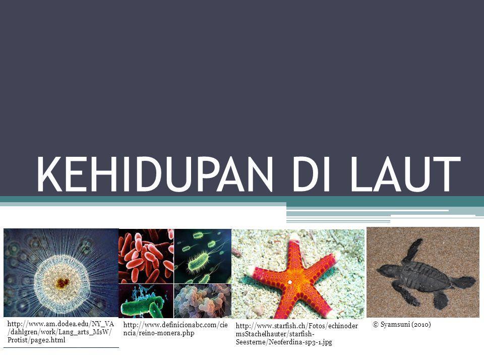 Binomial Nomenclature Sistem penamaan organisme menggunakan bahasa universal ilmiah, yaitu bahasa latin Contoh: Diadema sitosum (ketik) Diadema sitosum (tulisan tangan)