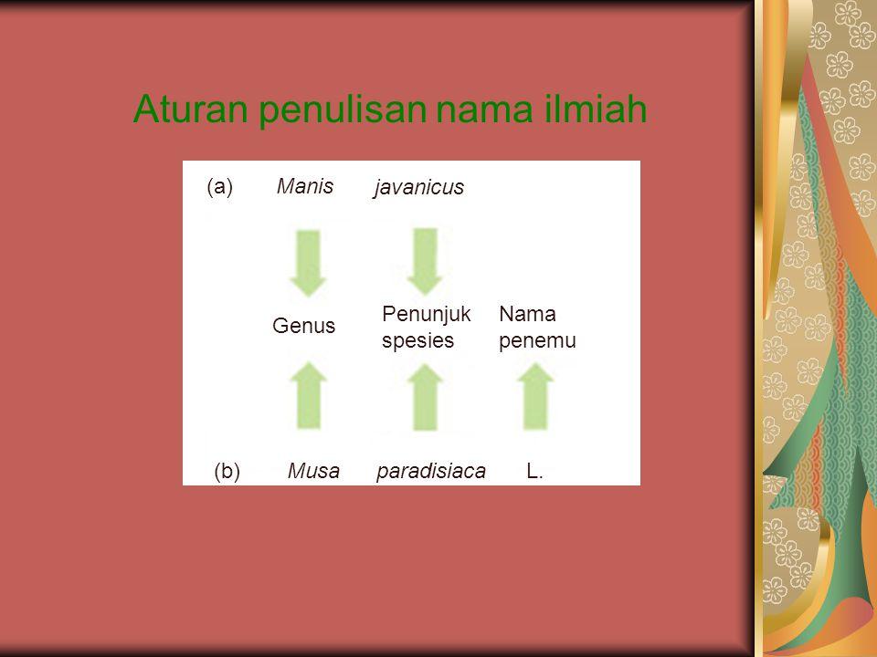 Aturan penulisan nama ilmiah (a)Manis javanicus Genus Penunjuk spesies Nama penemu (b)MusaparadisiacaL.