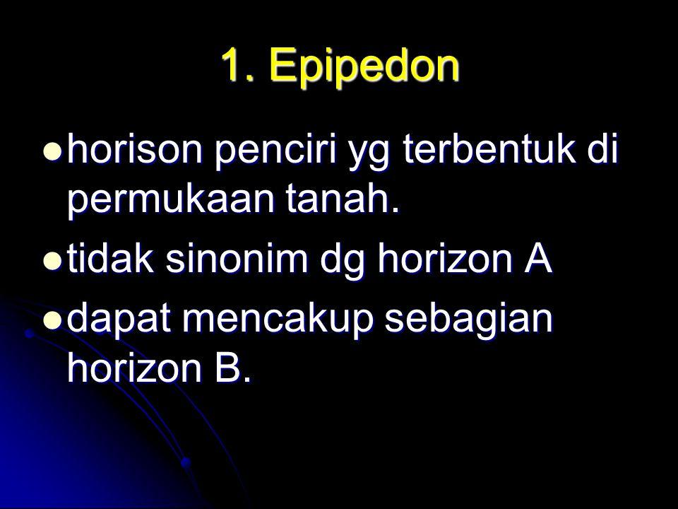 1. Epipedon horison penciri yg terbentuk di permukaan tanah. horison penciri yg terbentuk di permukaan tanah. tidak sinonim dg horizon A tidak sinonim