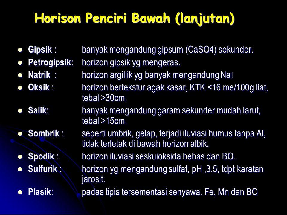 Horison Penciri Bawah (lanjutan) Gipsik : banyak mengandung gipsum (CaSO4) sekunder. Gipsik : banyak mengandung gipsum (CaSO4) sekunder. Petrogipsik :