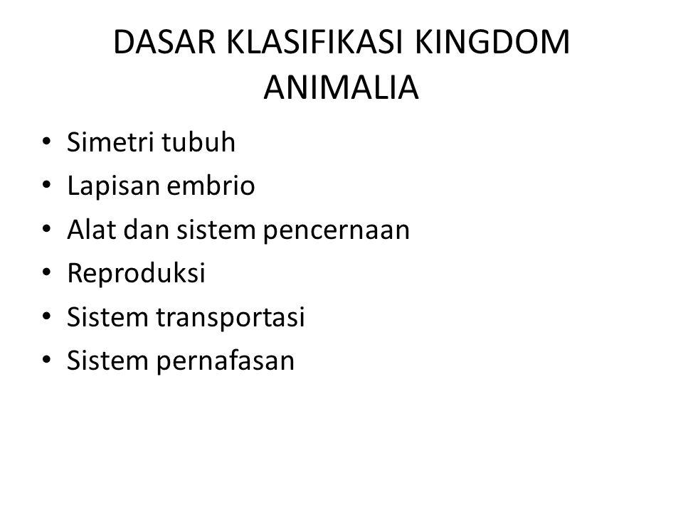 KKM 75