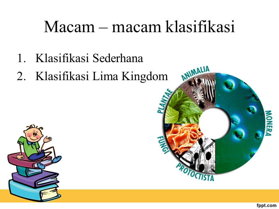 Macam – macam klasifikasi  Klasifikasi Sederhana  Klasifikasi Lima Kingdom