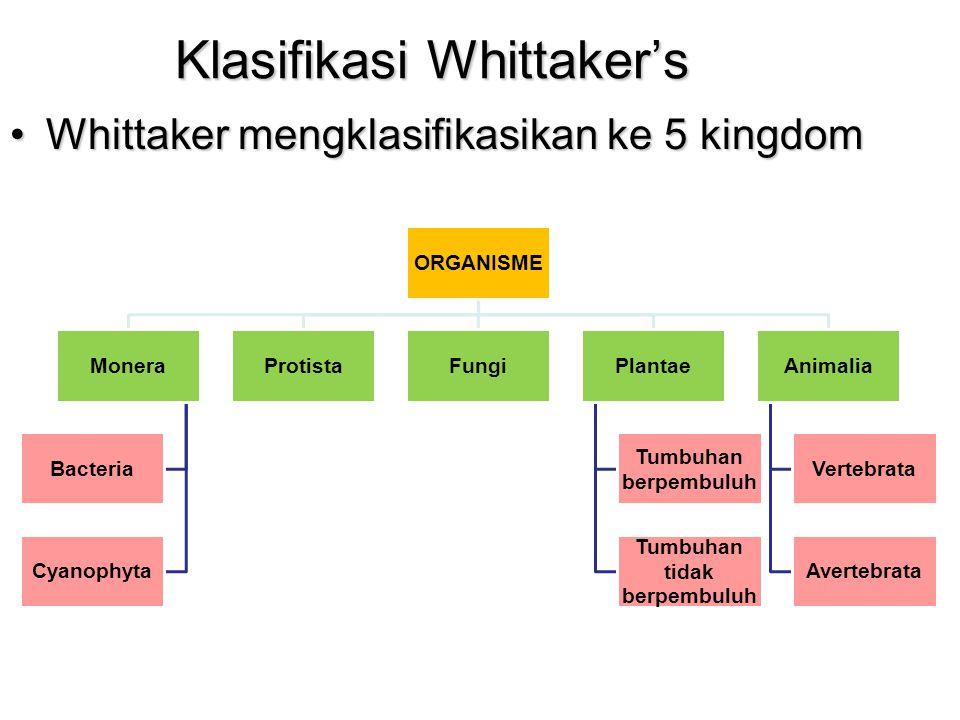Klasifikasi Whittaker's Whittaker mengklasifikasikan ke 5 kingdomWhittaker mengklasifikasikan ke 5 kingdom ORGANISME Monera Bacteria Cyanophyta Protis