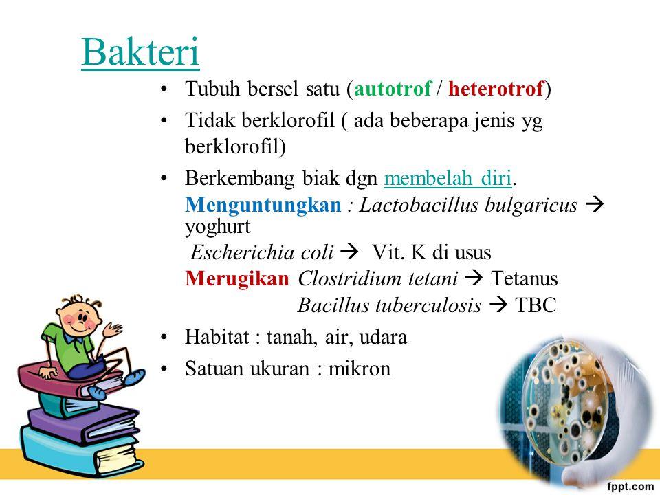 Bakteri Tubuh bersel satu (autotrof / heterotrof) Tidak berklorofil ( ada beberapa jenis yg berklorofil) Berkembang biak dgn membelah diri.membelah di
