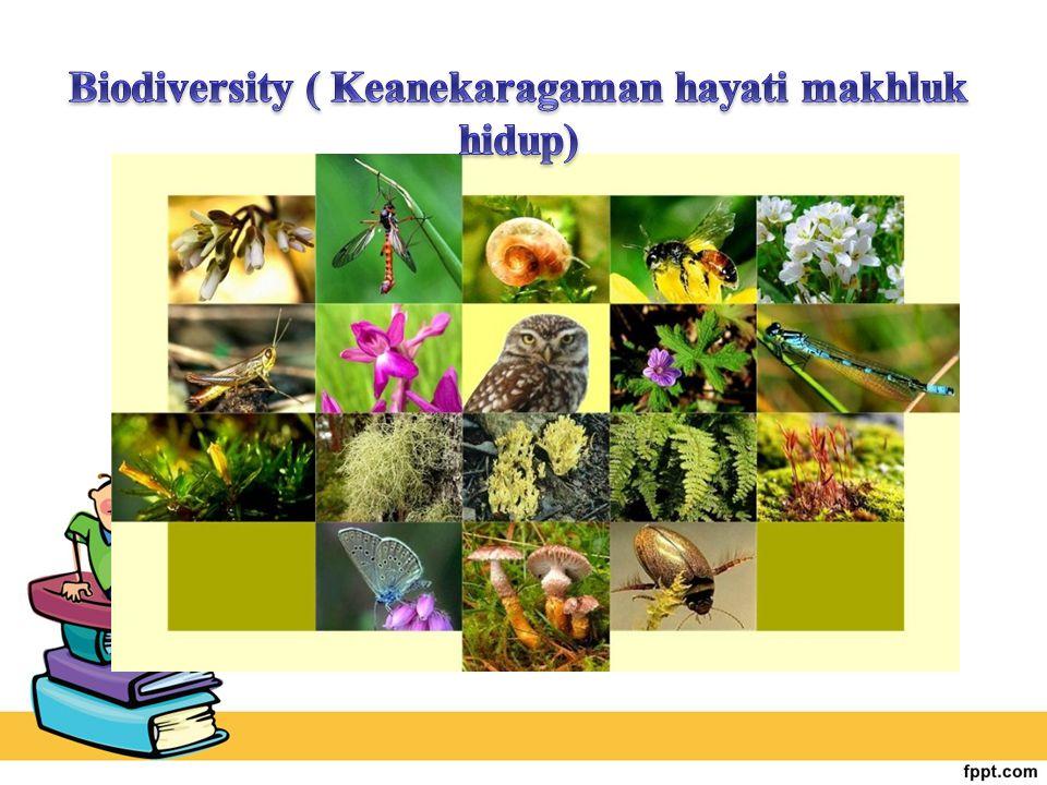 Klasifikasi : Adalah pengelompokan makhluk hidup berdasarkan persamaan ciri bentuk tubuh, cara hidup, tempat hidup, daerah penyebaran.