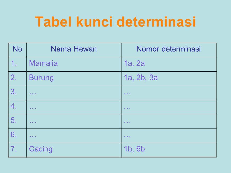 Tabel kunci determinasi NoNama HewanNomor determinasi 1.Mamalia1a, 2a 2.Burung1a, 2b, 3a 3.…… 4.…… 5.…… 6.…… 7.Cacing1b, 6b