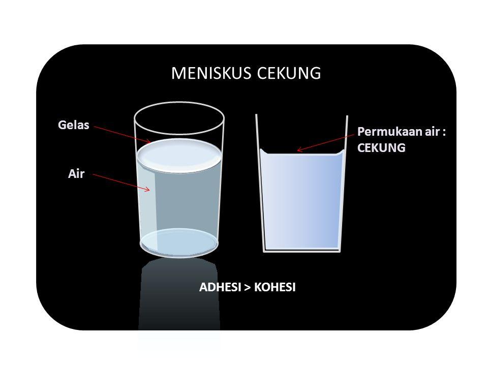 MENISKUS CEKUNG ADHESI > KOHESI Air Gelas Permukaan air : CEKUNG