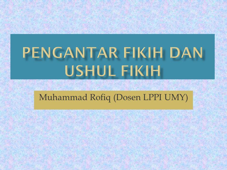 Muhammad Rofiq (Dosen LPPI UMY)