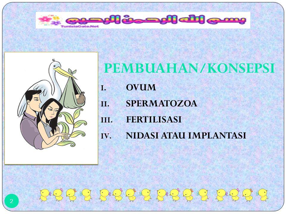 12 Siklus Menstruasi dimulai dari periode setelah menstruasi, biasanya pada hari ke-6, 7, 8.