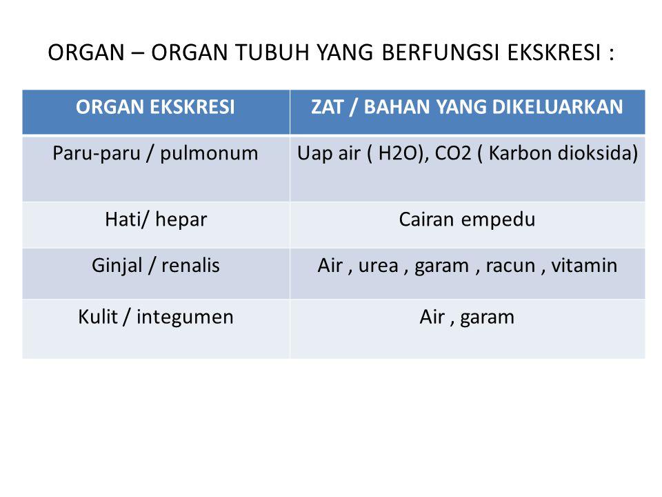 ORGAN – ORGAN TUBUH YANG BERFUNGSI EKSKRESI : ORGAN EKSKRESIZAT / BAHAN YANG DIKELUARKAN Paru-paru / pulmonumUap air ( H2O), CO2 ( Karbon dioksida) Ha