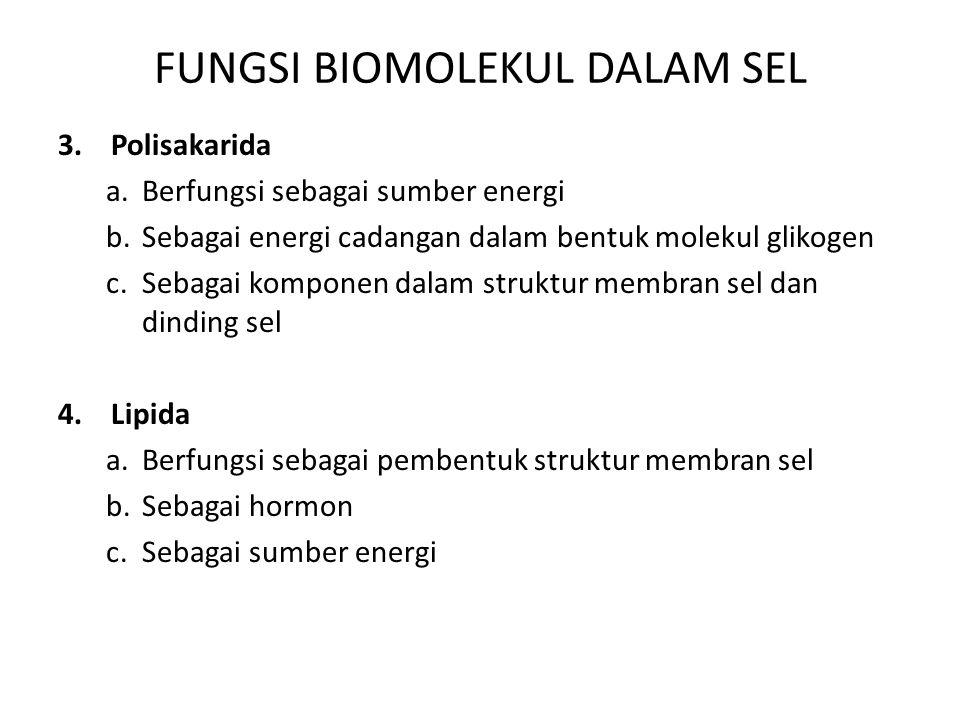 FUNGSI BIOMOLEKUL DALAM SEL 3. Polisakarida a.Berfungsi sebagai sumber energi b.Sebagai energi cadangan dalam bentuk molekul glikogen c.Sebagai kompon