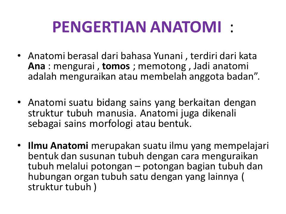 PENGERTIAN ANATOMI : Anatomi berasal dari bahasa Yunani, terdiri dari kata Ana : mengurai, tomos ; memotong, Jadi anatomi adalah menguraikan atau memb