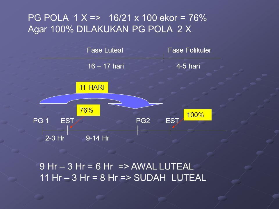 Fase Luteal Fase Folikuler 16 – 17 hari 4-5 hari PG POLA 1 X => 16/21 x 100 ekor = 76% Agar 100% DILAKUKAN PG POLA 2 X PG 1 EST PG2 EST 2-3 Hr 9-14 Hr 76% 100% 9 Hr – 3 Hr = 6 Hr => AWAL LUTEAL 11 Hr – 3 Hr = 8 Hr => SUDAH LUTEAL 11 HARI