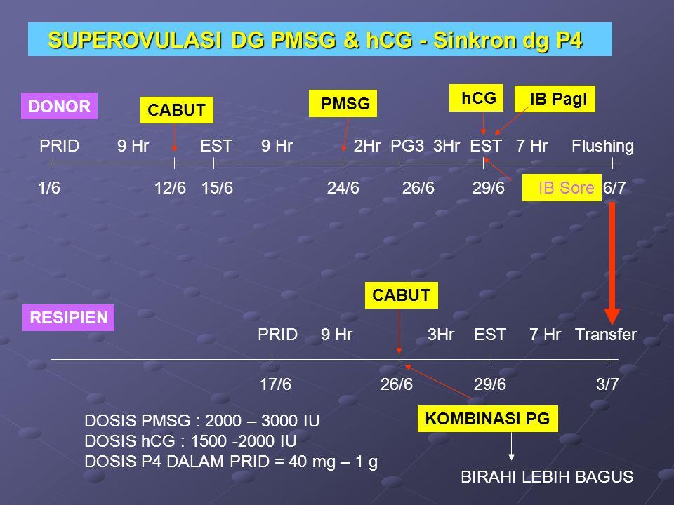 DONOR RESIPIEN PRID 9 Hr EST 9 Hr 2Hr PG3 3Hr EST 7 Hr Flushing PMSG PRID 9 Hr 3Hr EST 7 Hr Transfer hCG IB Pagi IB Sore 1/6 12/6 15/6 24/6 26/6 29/6 6/7 SUPEROVULASI DG PMSG & hCG - Sinkron dg P4 SUPEROVULASI DG PMSG & hCG - Sinkron dg P4 DOSIS PMSG : 2000 – 3000 IU DOSIS hCG : 1500 -2000 IU DOSIS P4 DALAM PRID = 40 mg – 1 g 17/6 26/6 29/6 3/7 CABUT KOMBINASI PG BIRAHI LEBIH BAGUS