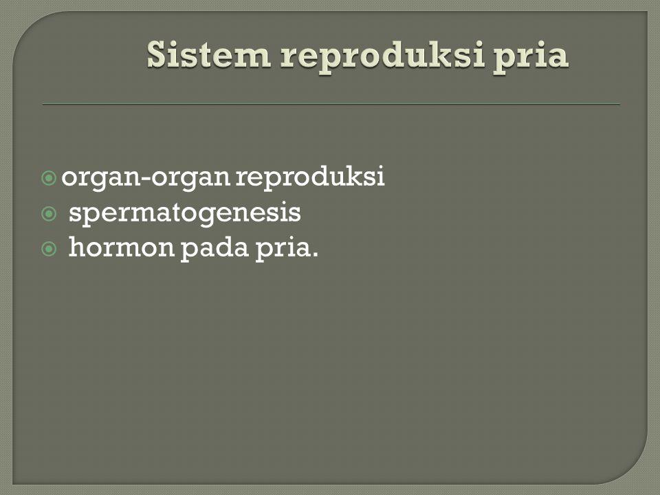 Saluran pengeluaran pada organ reproduksi dalam pria terdiri dari:  epididimis,  vas deferens,  saluran ejakulasi  uretra.