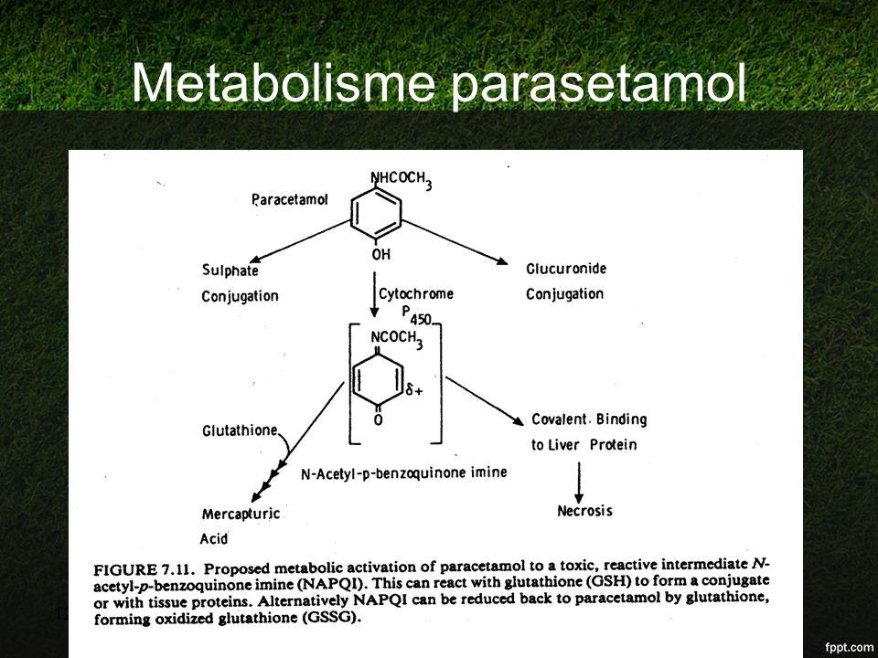 Metabolisme parasetamol 12/04/2015