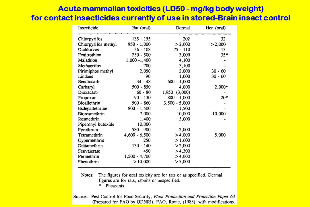 Acute mammalian toxicities (LD50 - mg/kg body weight) for contact insecticides currently of use in stored-Brain insect control