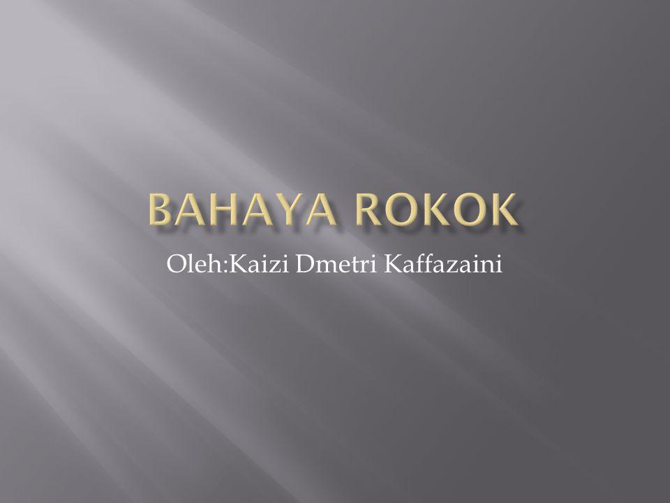 Oleh:Kaizi Dmetri Kaffazaini