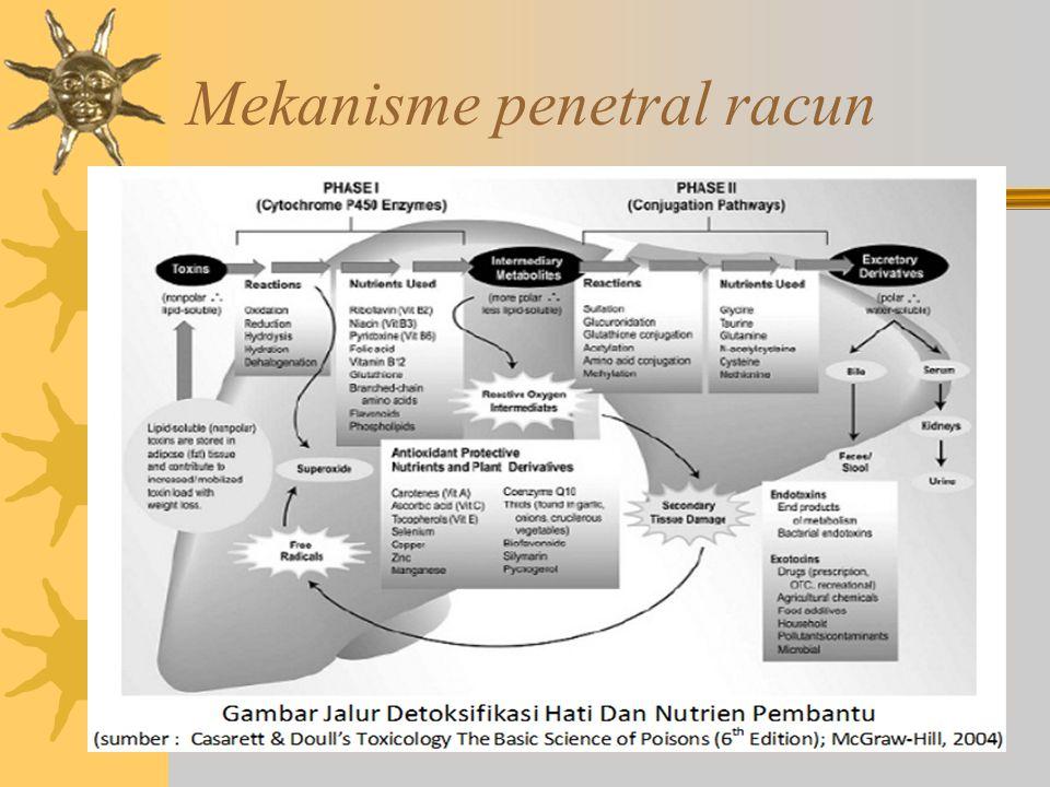 Mekanisme penetral racun