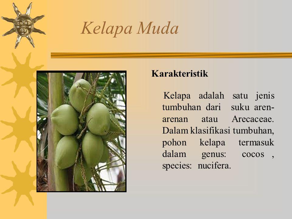 Kelapa Muda Karakteristik Kelapa adalah satu jenis tumbuhan dari suku aren- arenan atau Arecaceae. Dalam klasifikasi tumbuhan, pohon kelapa termasuk d
