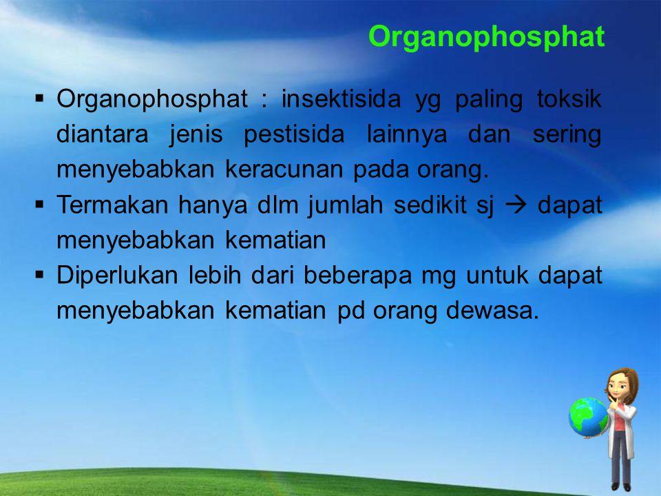 2. PERNAPASAN (INHALASI) Udara dgn mudah terkontaminasi pestisida selama penyemprotan. Msk ke paru - paru  dgn cepat akan masuk ke dalam darah  racu