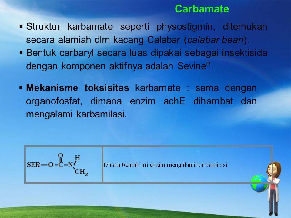 Struktur Insektisida Carbamate
