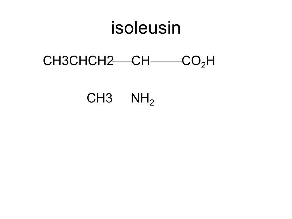 isoleusin CH3CHCH2 CH CO 2 H CH3 NH 2