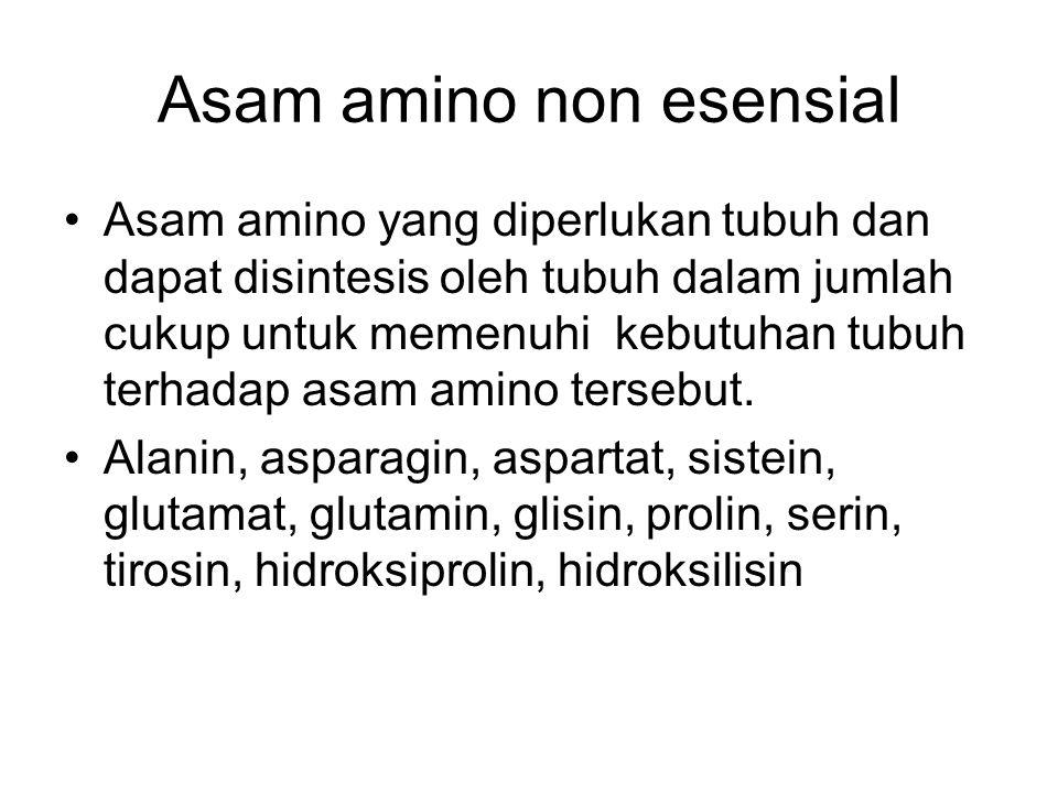 Asam amino non esensial Asam amino yang diperlukan tubuh dan dapat disintesis oleh tubuh dalam jumlah cukup untuk memenuhi kebutuhan tubuh terhadap as