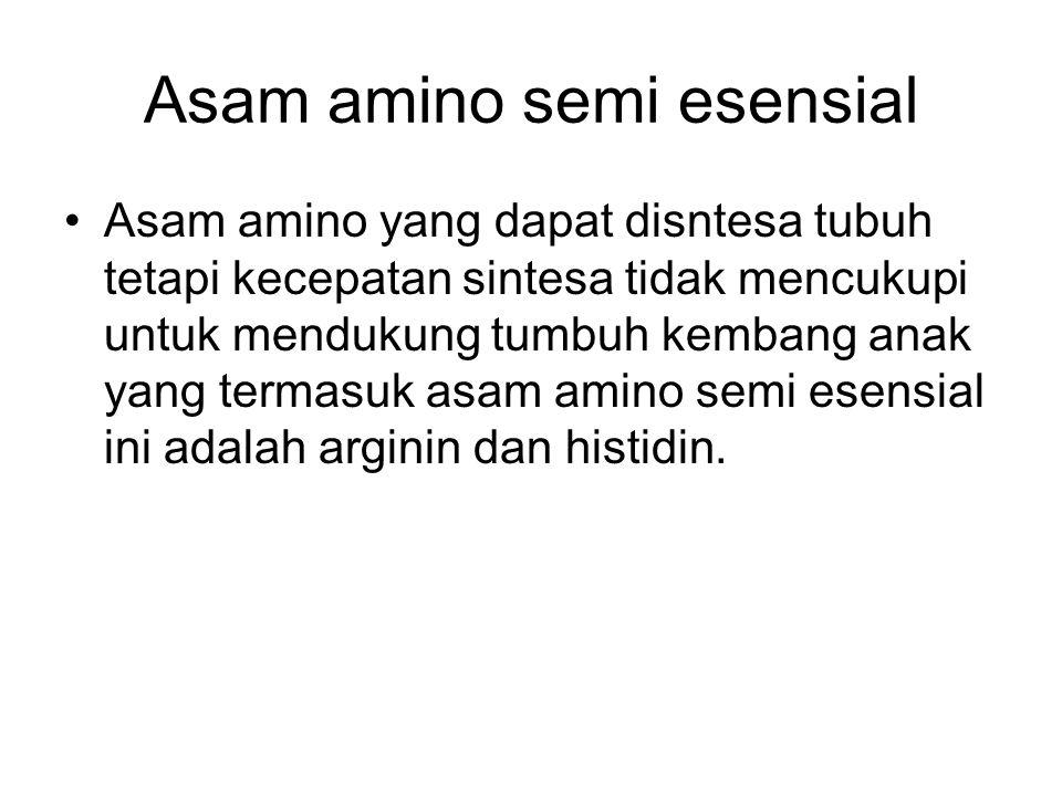 Asam amino semi esensial Asam amino yang dapat disntesa tubuh tetapi kecepatan sintesa tidak mencukupi untuk mendukung tumbuh kembang anak yang termas