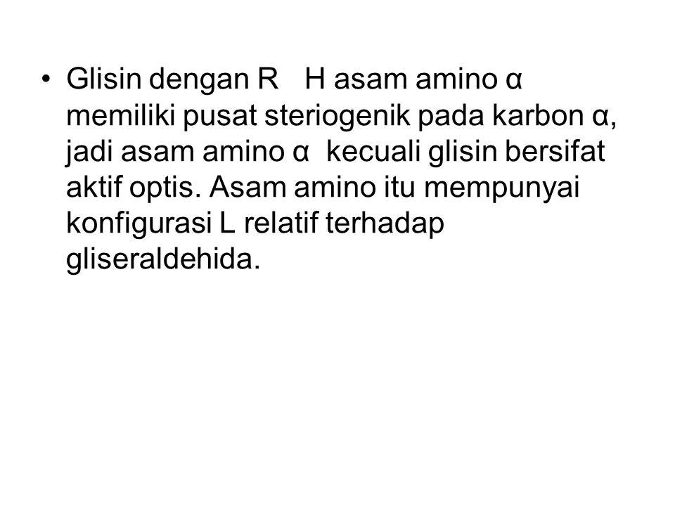 Glisin dengan R H asam amino α memiliki pusat steriogenik pada karbon α, jadi asam amino α kecuali glisin bersifat aktif optis. Asam amino itu mempuny